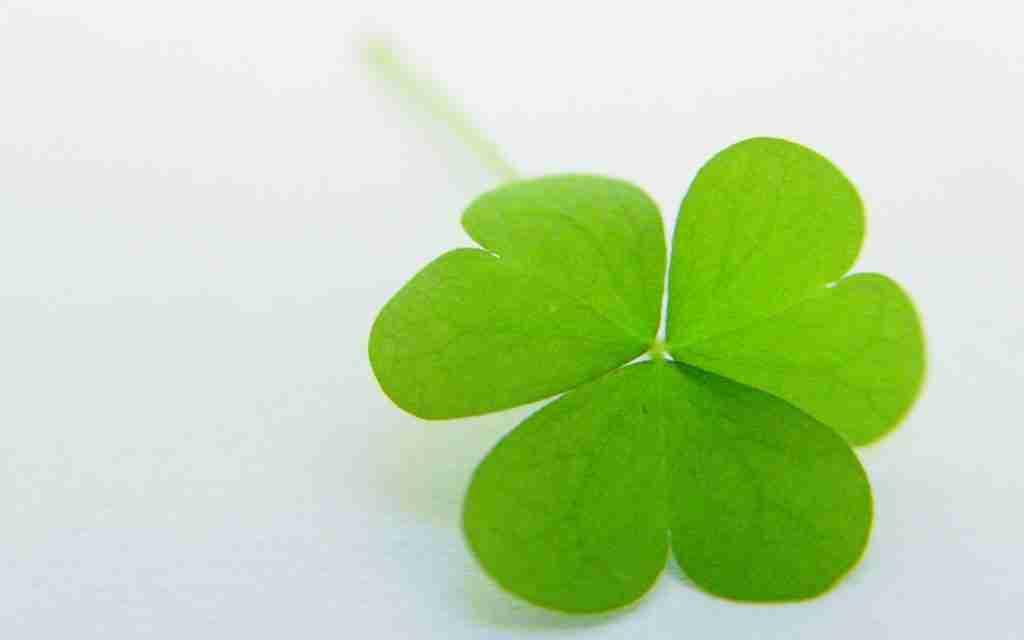 quick loans ireland 4 leaf clover green shamrock