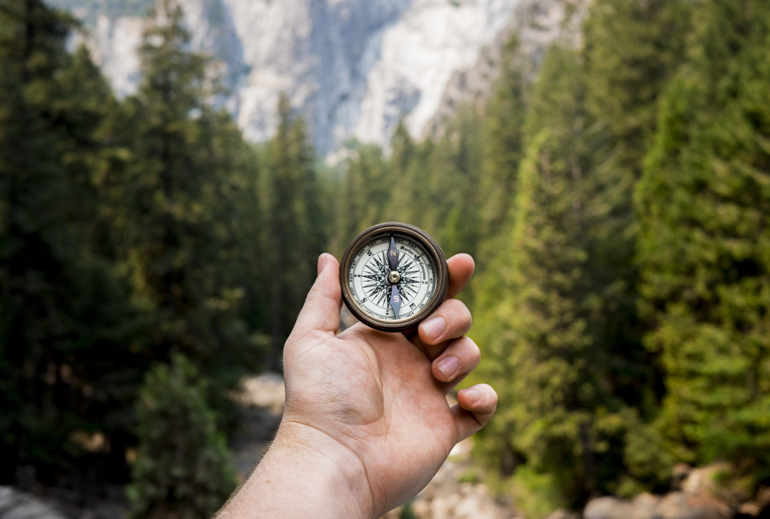 hand holding a compass in a forest cant get a loan anywhere