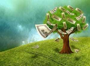 Direct Lenders Bad Credit Loans cash money tree in garden