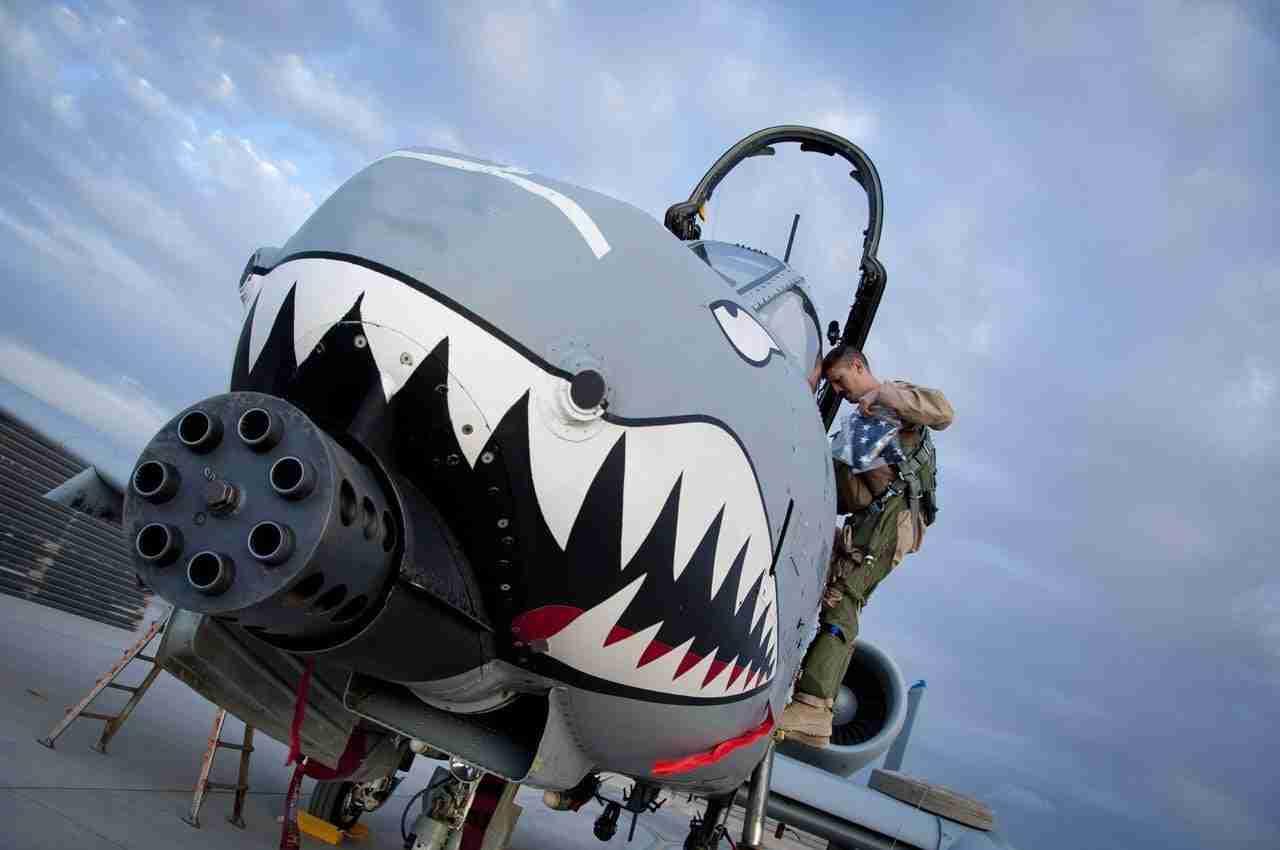 legal loan sharks online shark front plane revealing gun